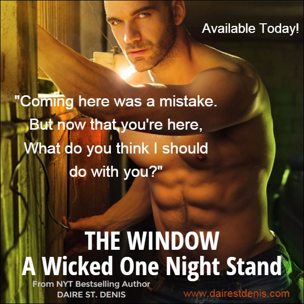 Promo Pic for THE WINDOW